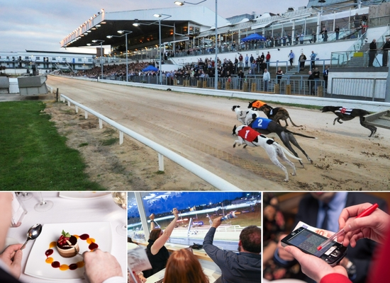 You'll have plenty to choose from with a gift voucher to your local Greyhound Stadium including exciting racing and a delicious meal in our restaurant